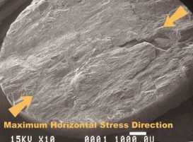 SEM picture of Lac du Bonnet granite